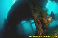 Dive Tulamben 08