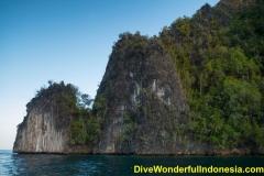 divewonderfulindonesia008