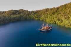 divewonderfulindonesia025