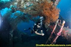 divewonderfulindonesia032