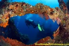 divewonderfulindonesia092