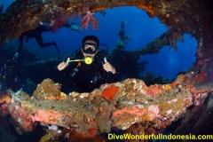 divewonderfulindonesia094