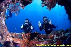 divewonderfulindonesia1232