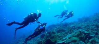 The Story of Our Scuba Diving